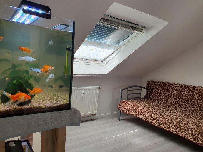 Zentralgelegene 2 Zimmer Wohnung in Rastatt • Denys ...